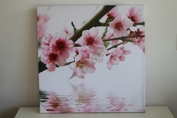 Lente Canvas