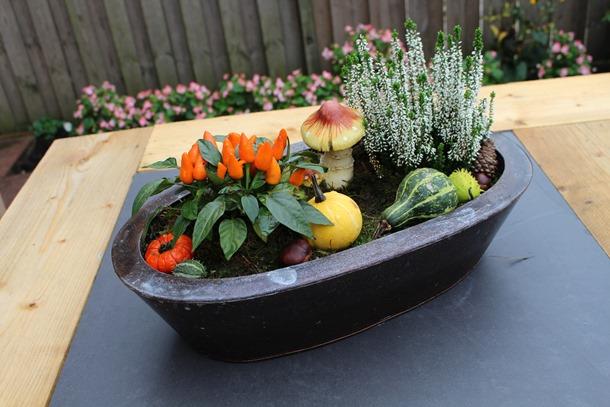 tuin, herfst, hoesje 444