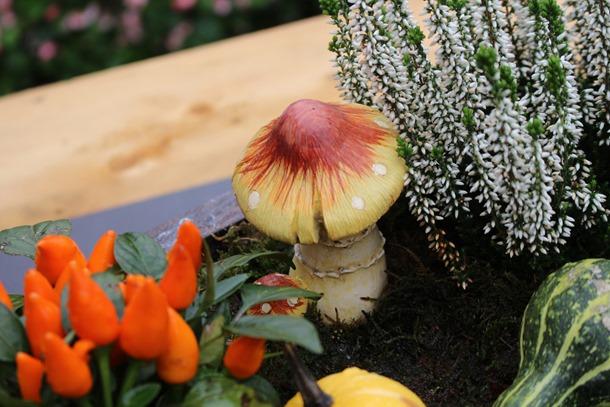 tuin, herfst, hoesje 446