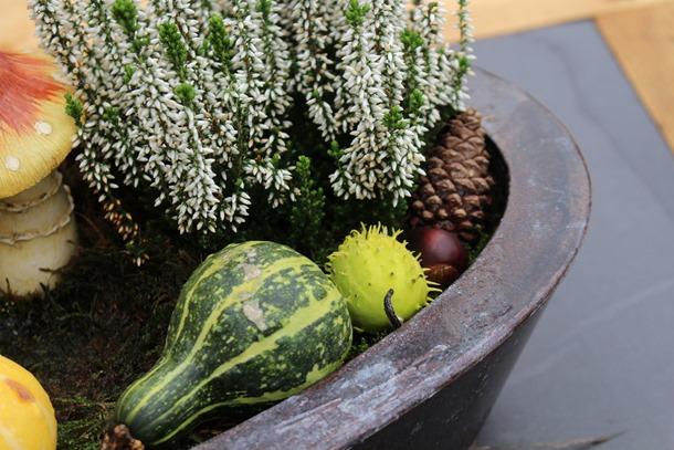 tuin, herfst, hoesje 447