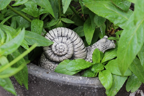 tuin, herfst, hoesje 473